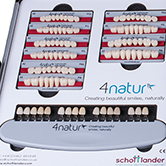 4natur Denture Teeth